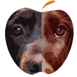 Æblevangen Fleur